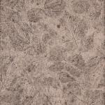 Forest Floor Alder